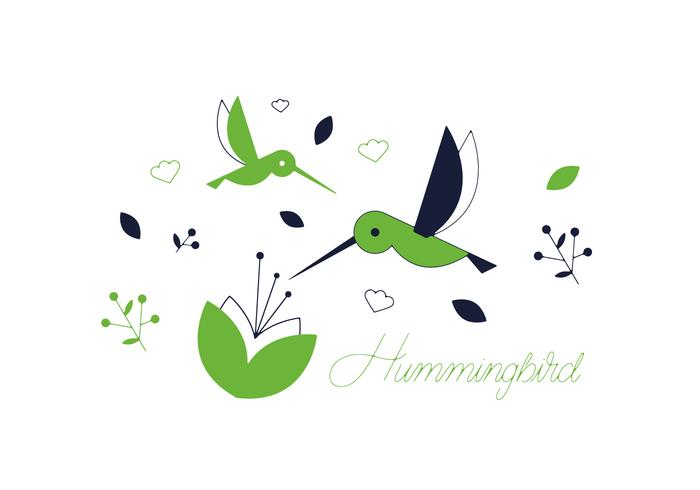 Free Hummingbird Vector