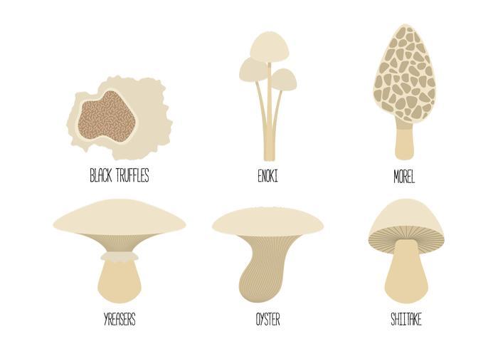 Mushroom Family Vectors