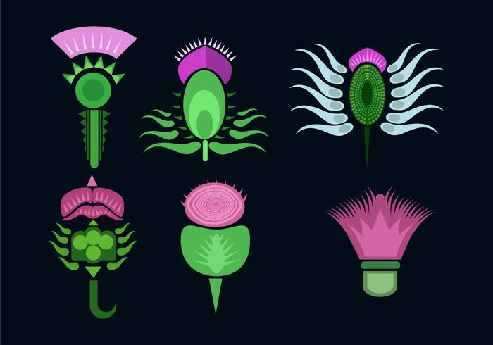 Various Thistle Flower Vector