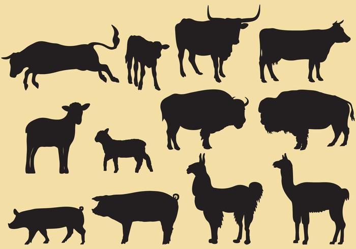 Cattle Silhouette Vectors