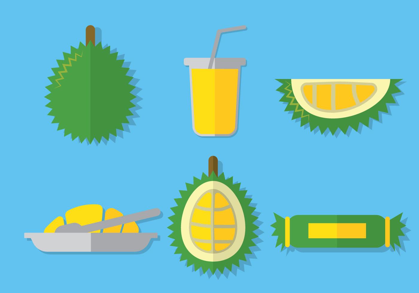 Durian Vector - Download Free Vector Art, Stock Graphics ...