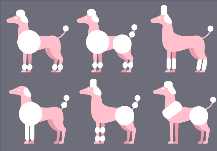 Free Poodle Vector
