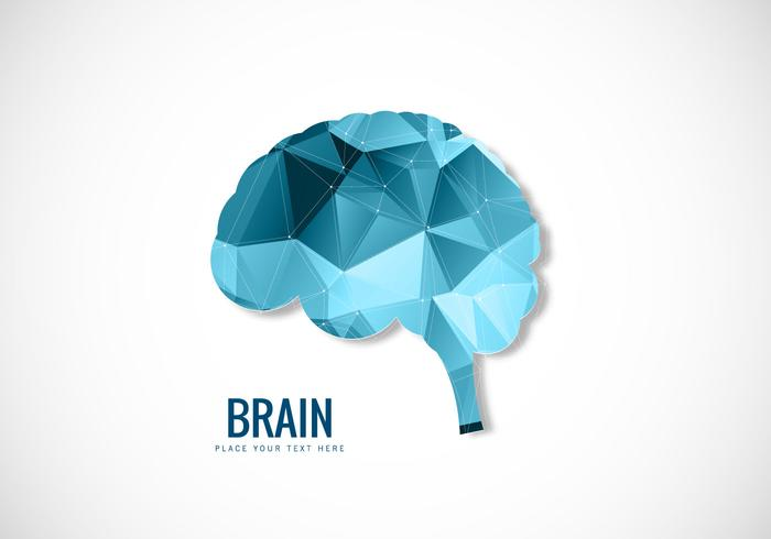 Style polygonal du cerveau humain
