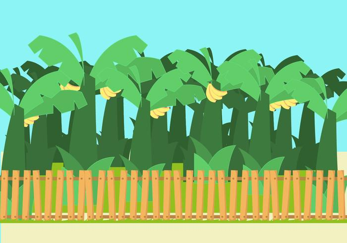 Banana Trees Vector
