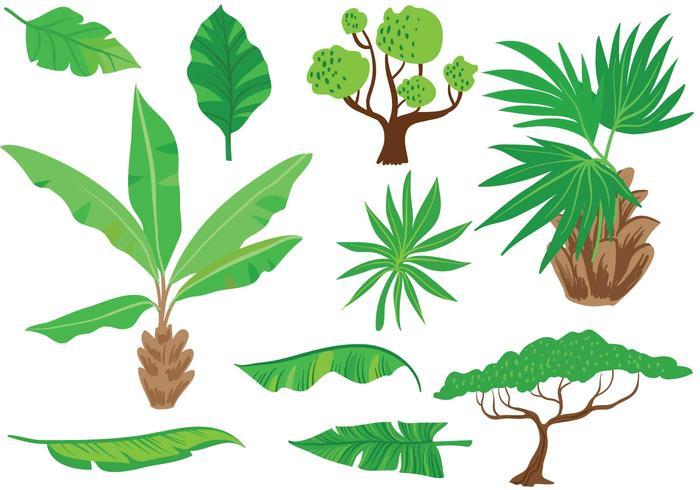 Free Exotic Vegetation Vectors