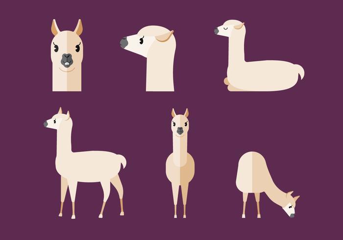 Zoo Animals Together Clipart Vector Llama - Downloa...