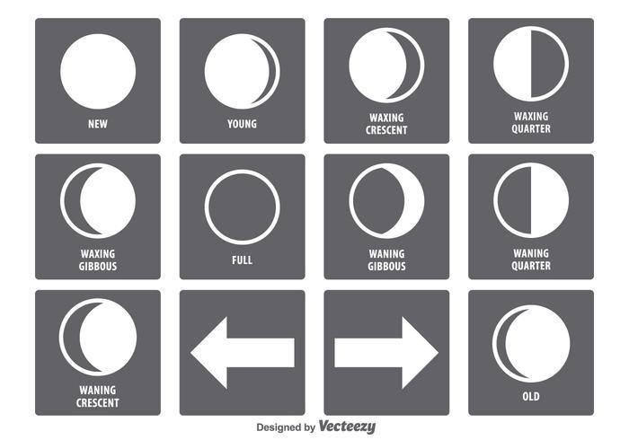 Conjunto de iconos de fase lunar vector