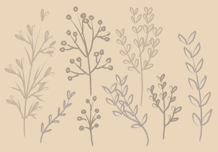 Vector Ink Branches