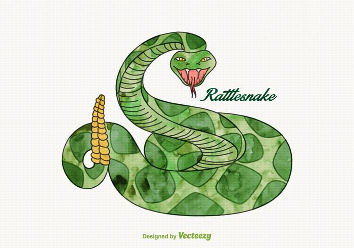 Free Vector Watercolor Rattlesnake
