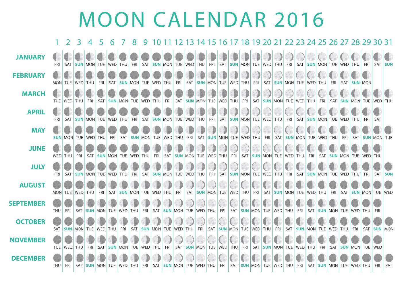 Moon Calendar 2016 Vector - Download Free Vector Art, Stock Graphics ...