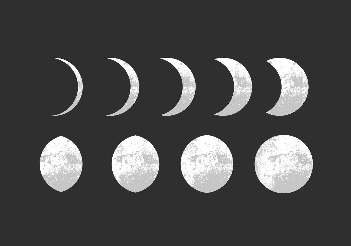 Moon Phase Vectors Vector White Icons