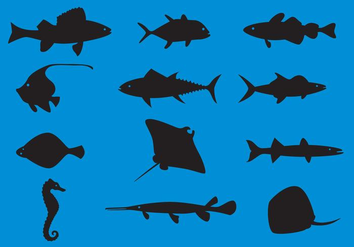 Sea Animals Silhouette Vectors