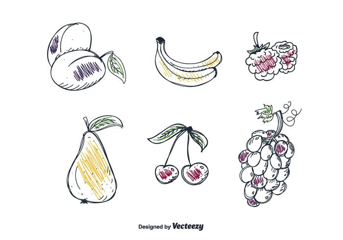 Vecteur de fruits à dessins à main