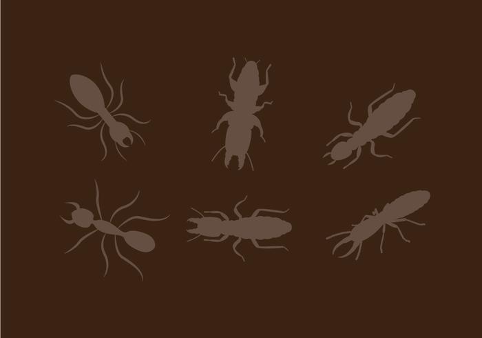 Vetor de termita