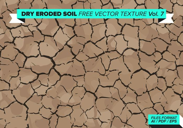 Torr Eroded Tree Gratis Vector Texture Vol. 7