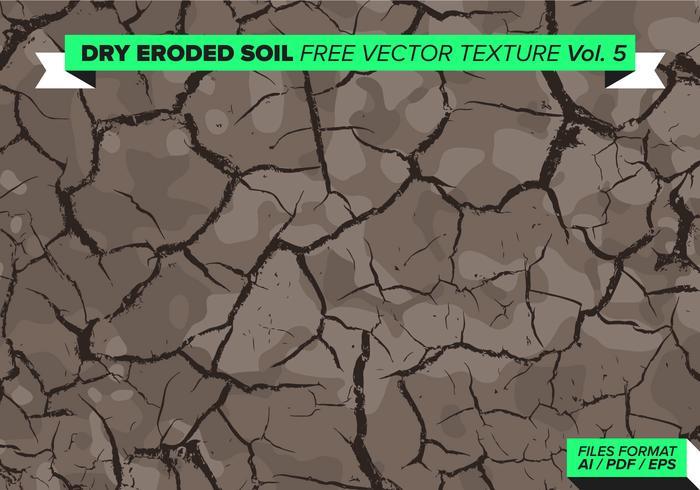 Trockener Erodierter Baum Free Vector Texture Vol. 5