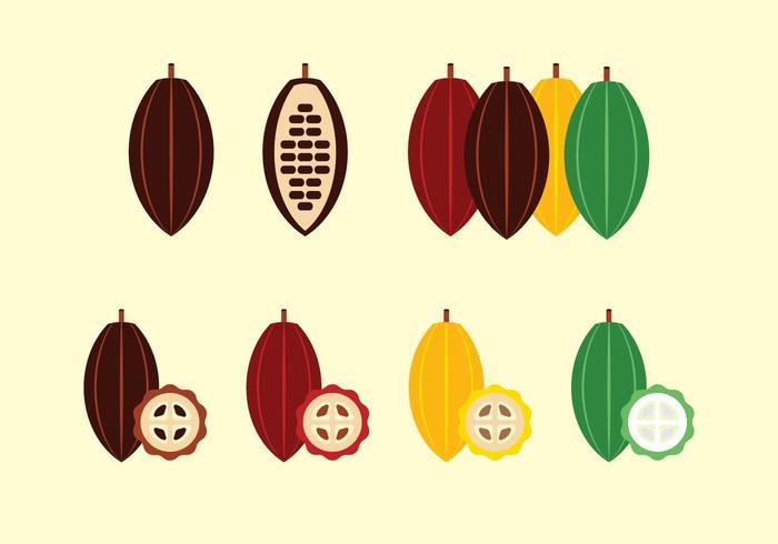 Vettore di frutta e fagioli di cacao