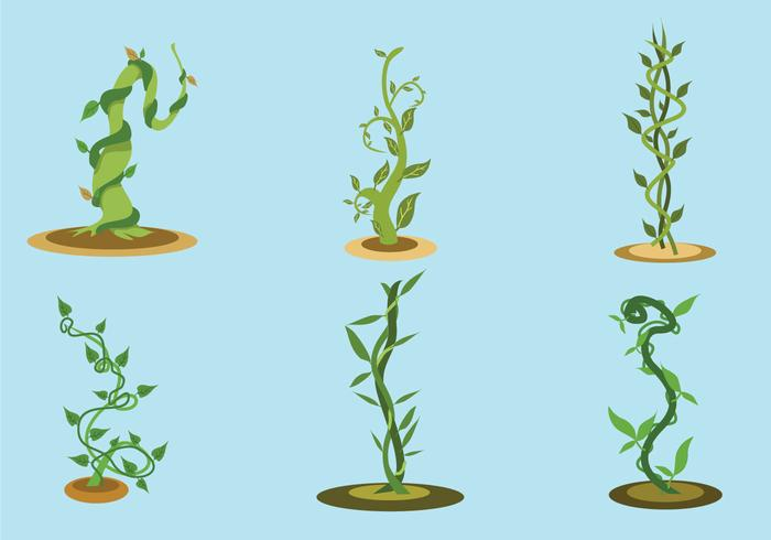 The Beanstalk Vector