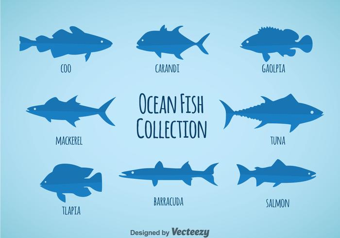 Ocean Fish Collection Vector