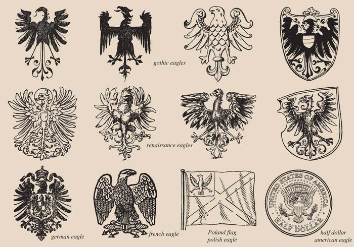 Eagles histórico vector