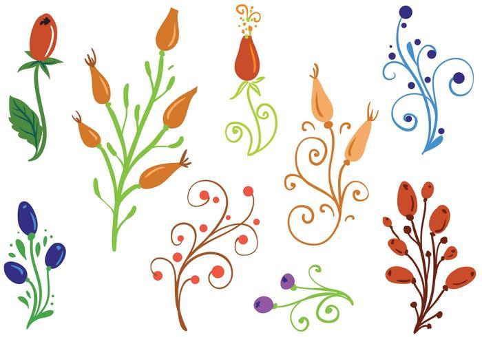 Free Rosehip Ornaments Vectors