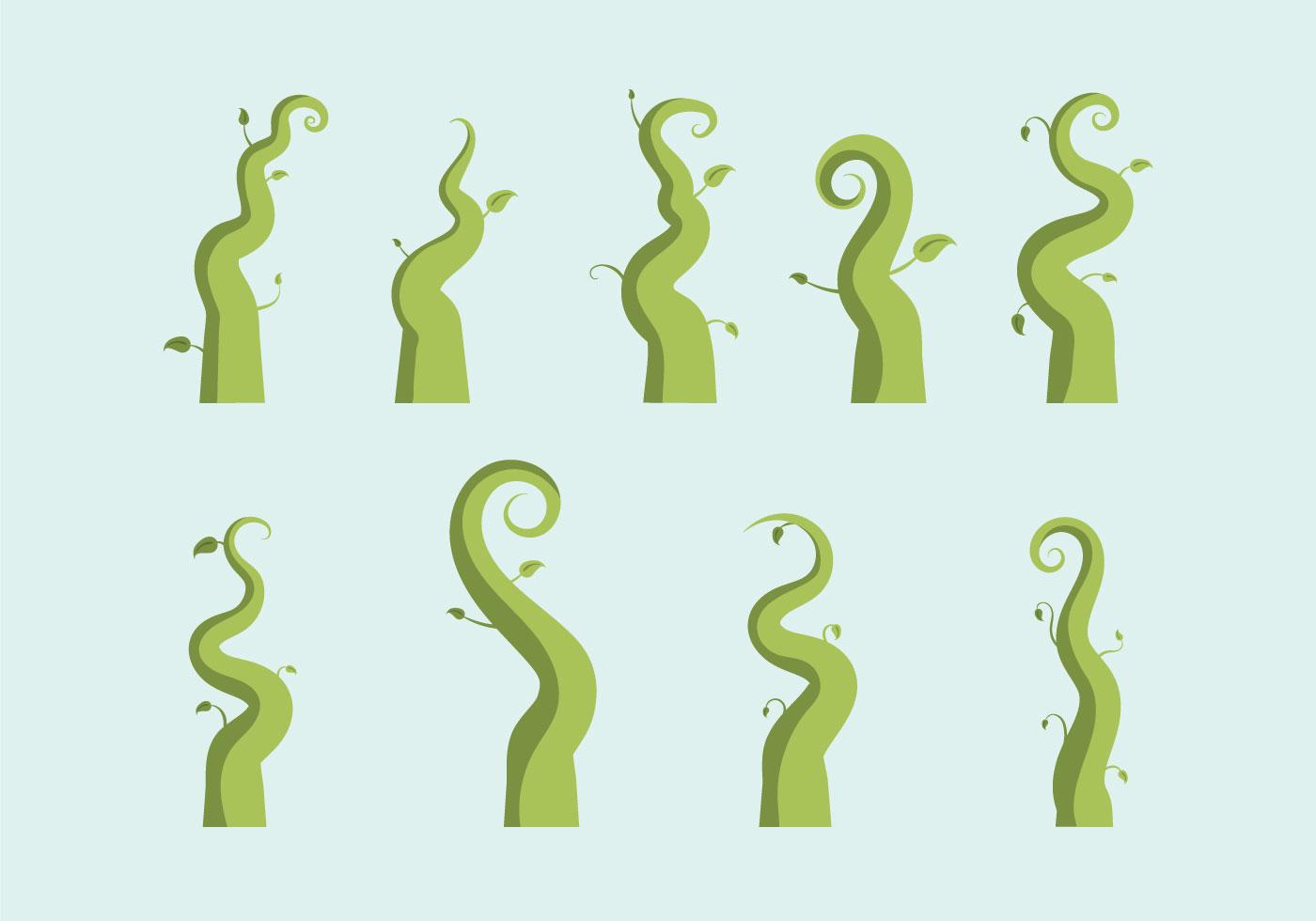 Free Beanstalk Vector Illustration Download Free Vector