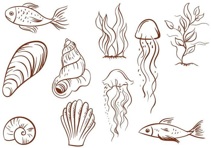 Free Vintage Sealife Vectors