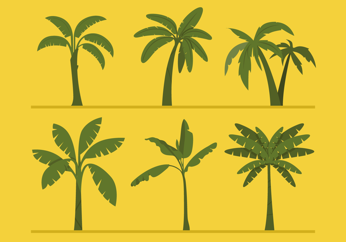 Banana Tree Vectors