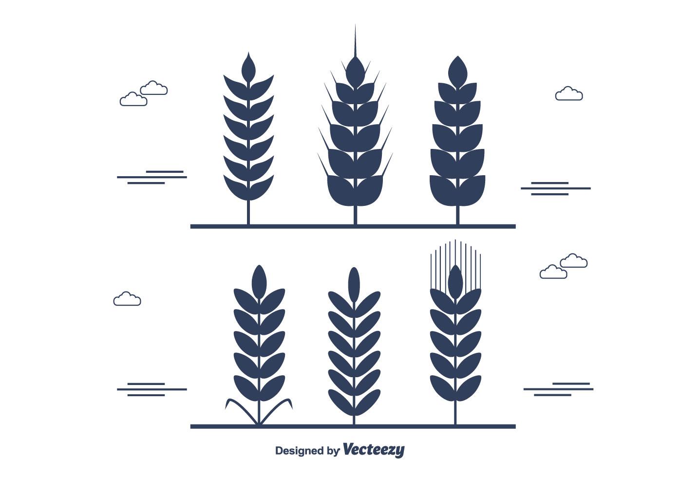 Wheat Stalk Vector
