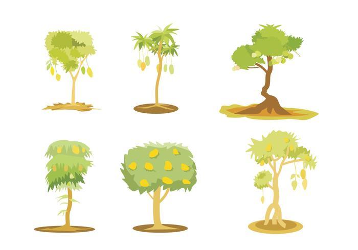 Vettore dell'illustrazione dell'albero di mango
