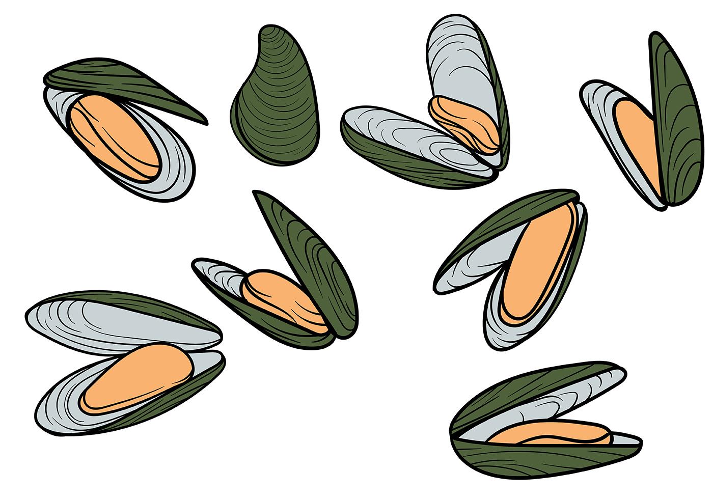 Free Mussel Vector - Download Free Vector Art, Stock Graphics & Images: www.vecteezy.com/vector-art/111352-free-mussel-vector