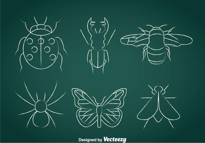 Insects Chalk Drawn Icons