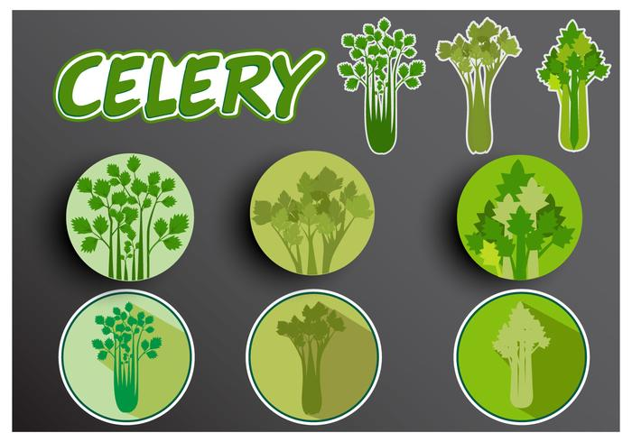 Illustration of Celery