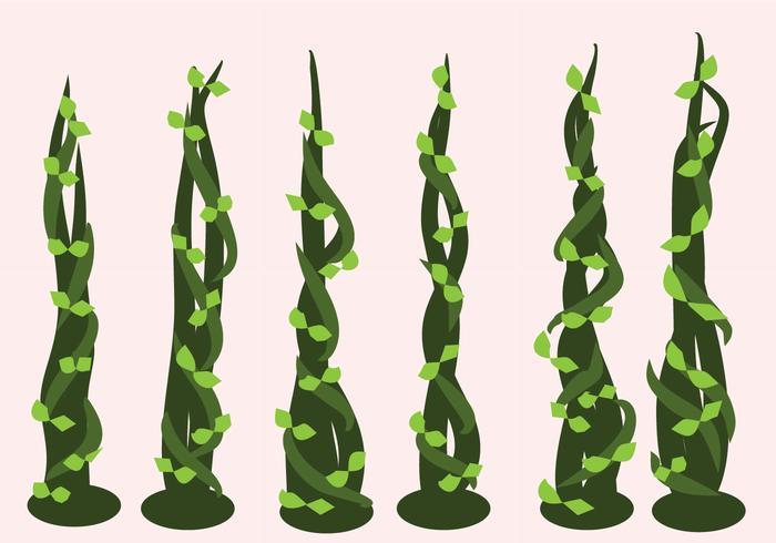 Beanstalk Vectors