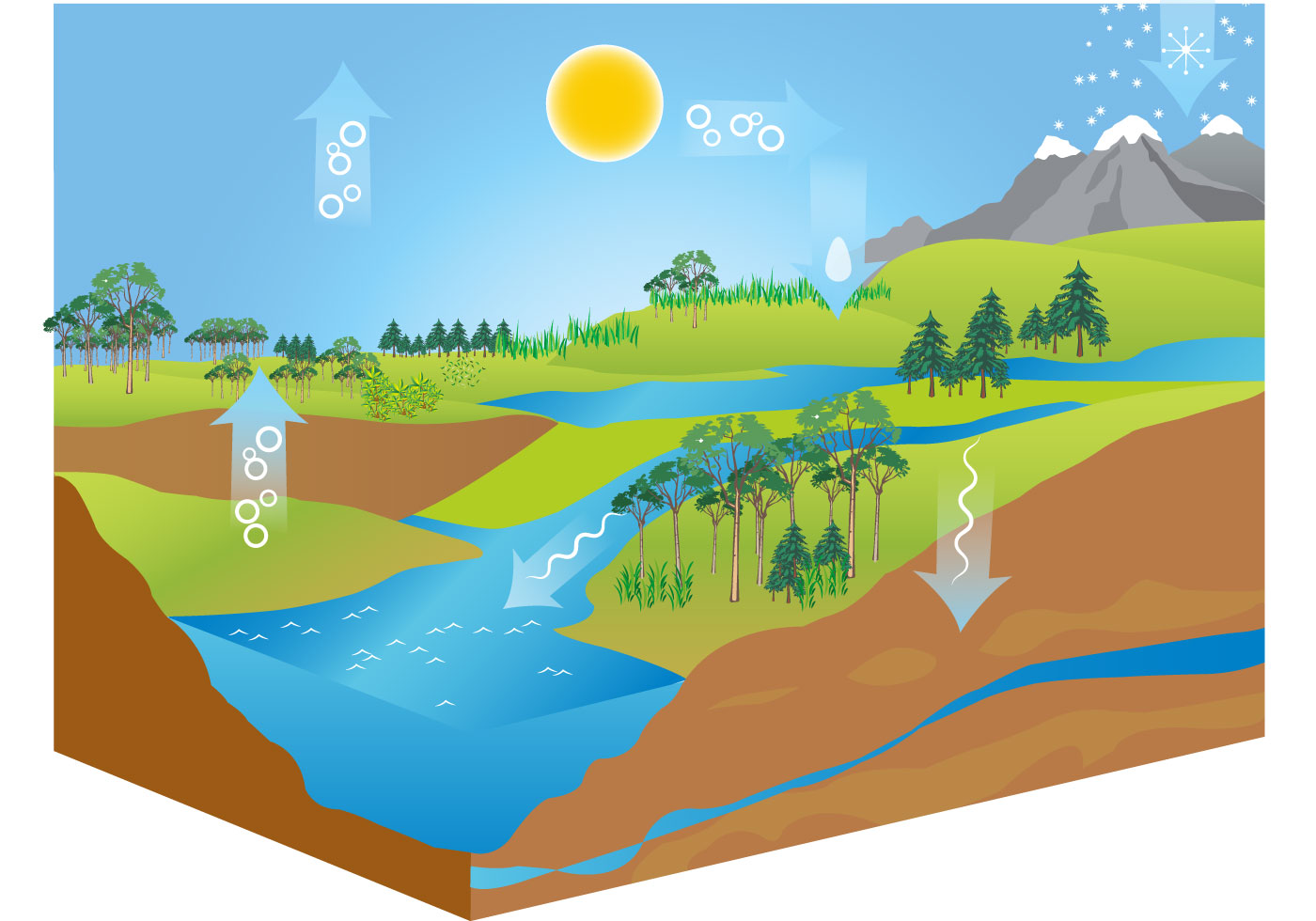Free Water    Cycle       Diagram    Vector  Download Free Vectors  Clipart Graphics   Vector Art