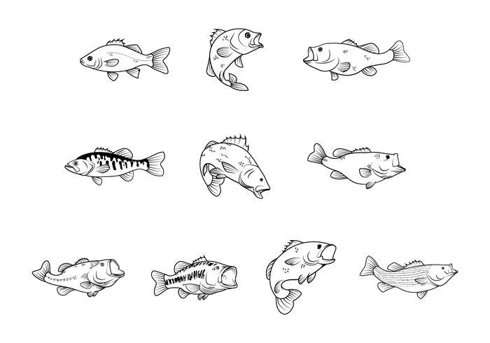 Vector libre de peces bajos