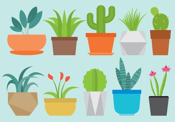 Home Plants vector