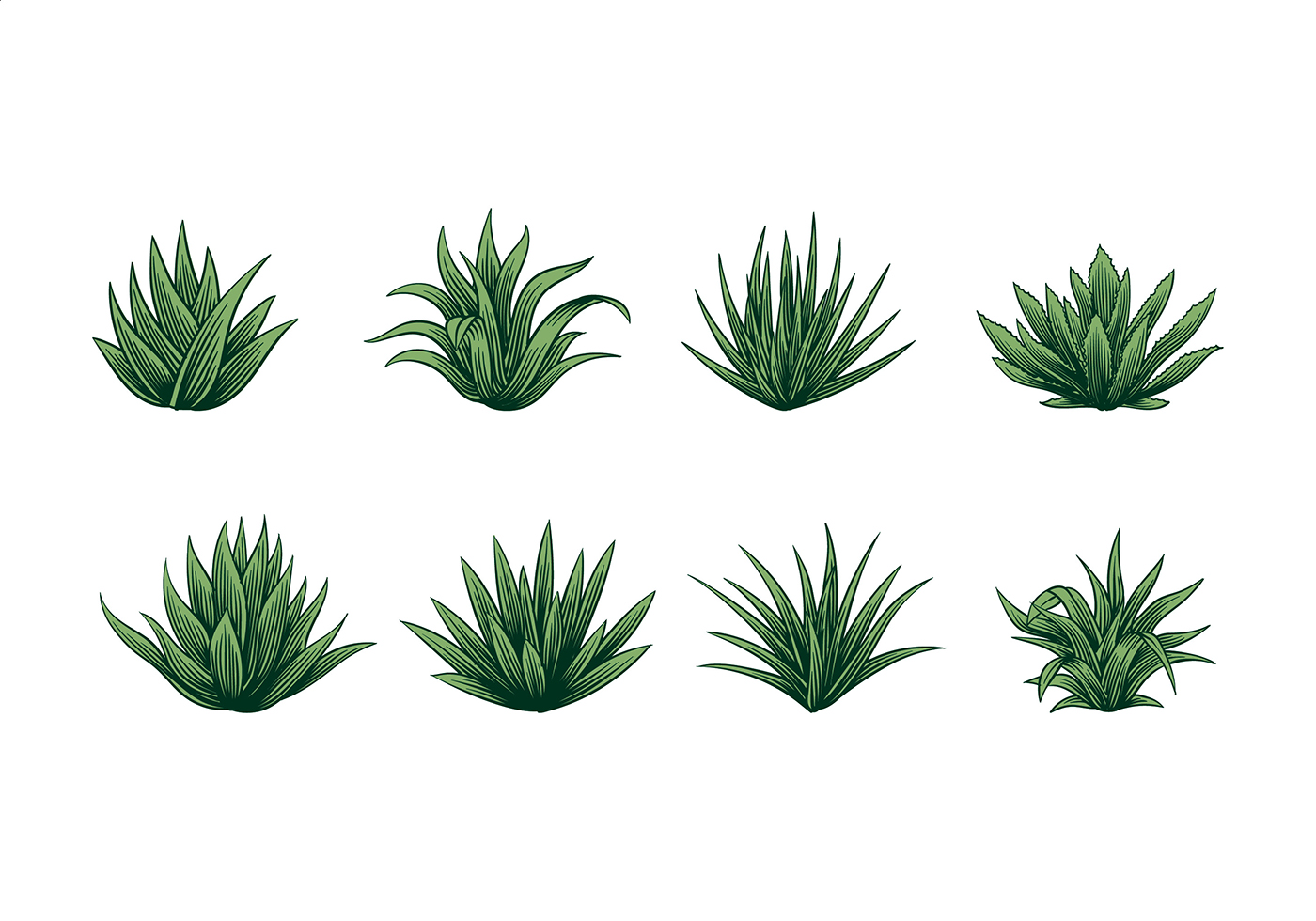 maguey vector download free vector art  stock graphics lined notebook paper vector free notebook paper template vector