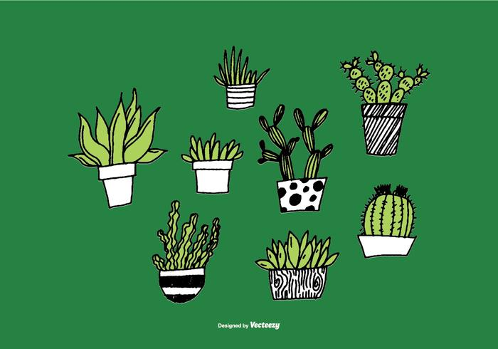 Vettori disegnati a mano della piantatrice succulente