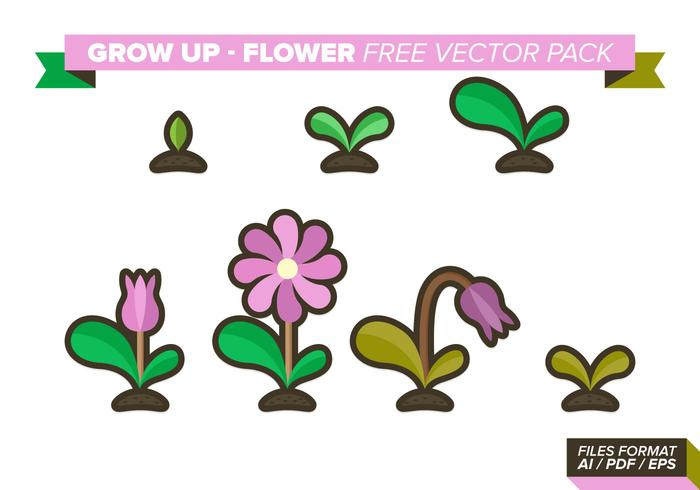Grow Up Flower Free Vector Pack
