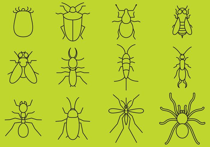 Bugs Line Icons vector