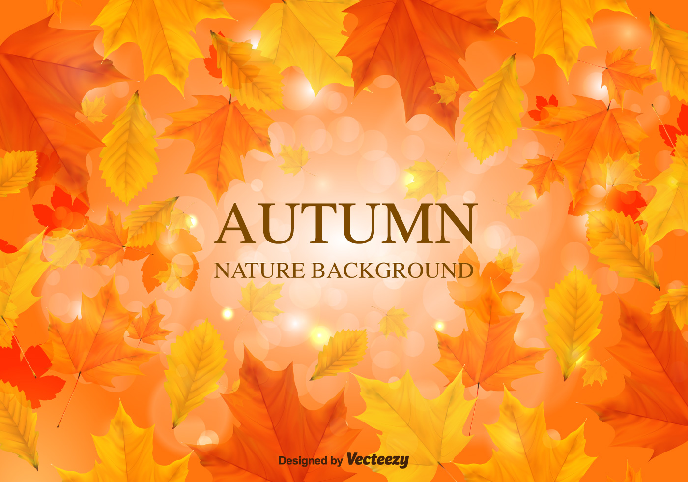 fall background vector leaves download free vector art