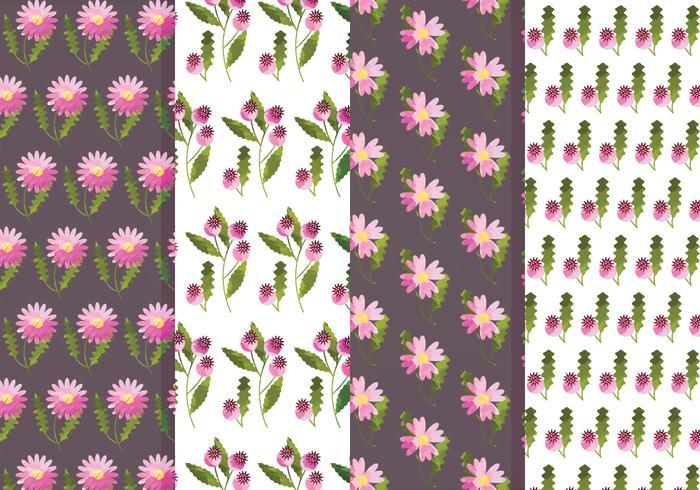 Ensemble de motifs de fleurs et de fleurs roses