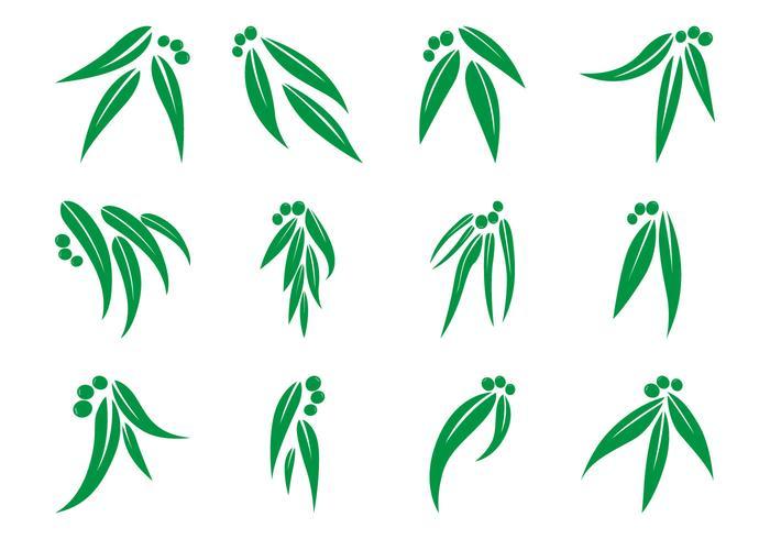 Logotipo De La Hoja De Eucalipto Libre Vectorial vector