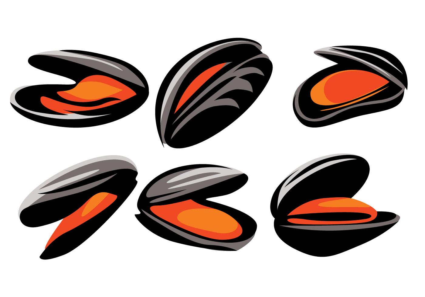 Mussel Vector - Download Free Vector Art, Stock Graphics ...