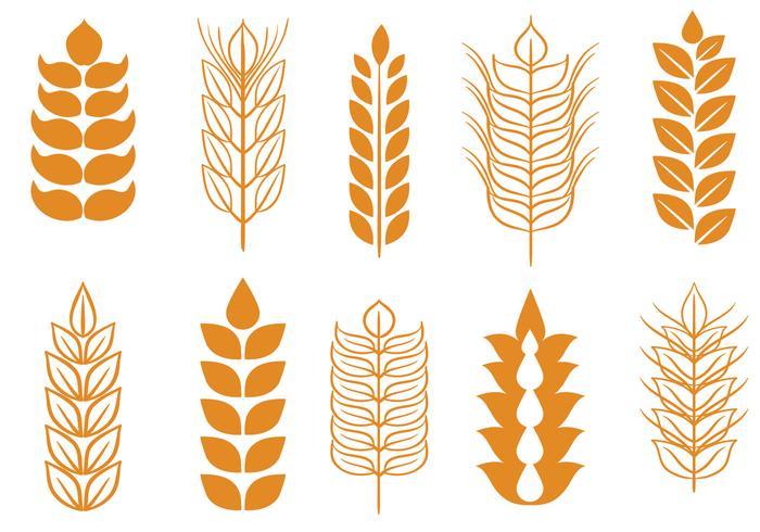 Vectores libres del tallo del trigo