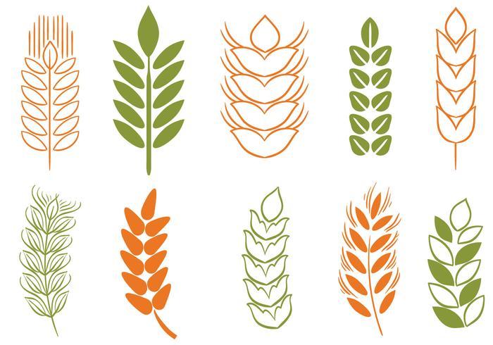 Free Wheat Stalk 2 Vectors