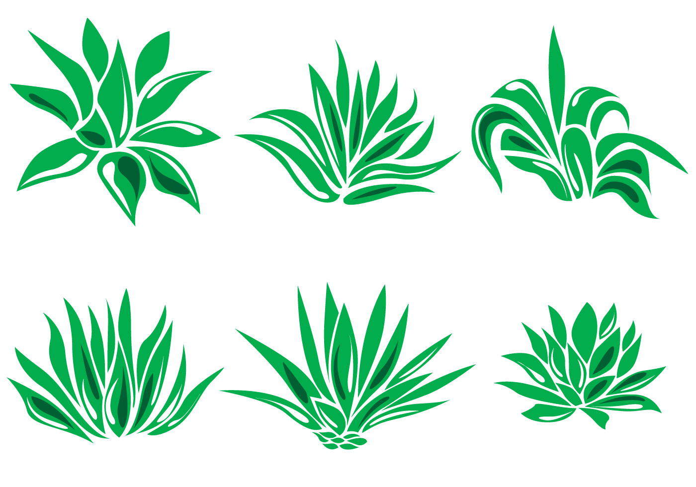 maguey vector download free vector art stock graphics
