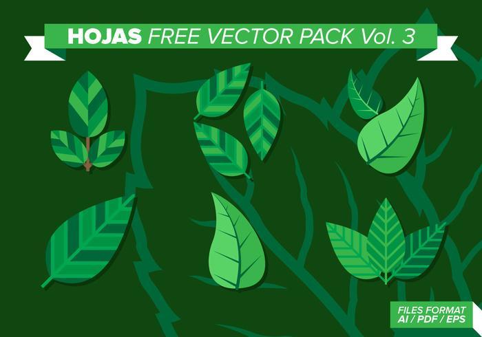 Hojas fri vektor pack vol. 3
