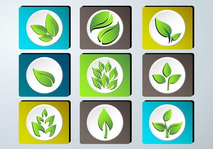 Set of green leaves design icon set